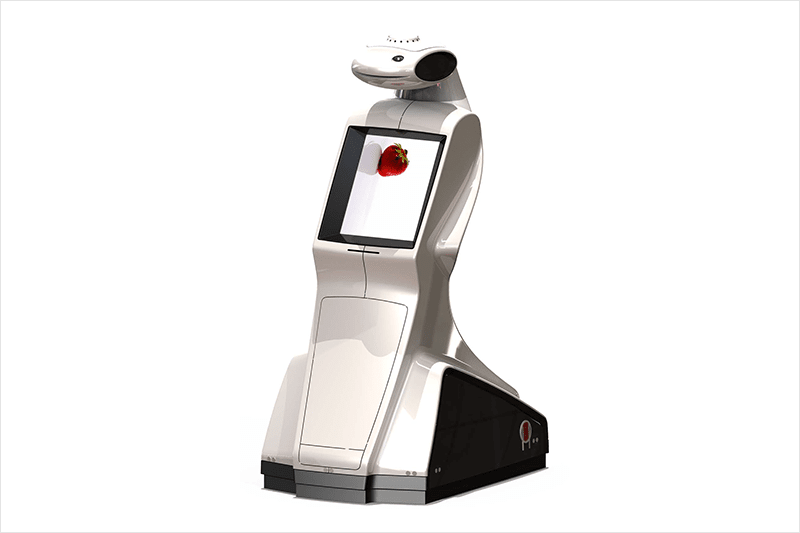 freindlyway advee robot